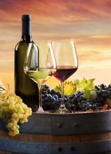 leckere spanische Weine